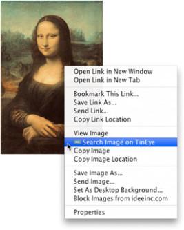 TinEye Image Search Plugin